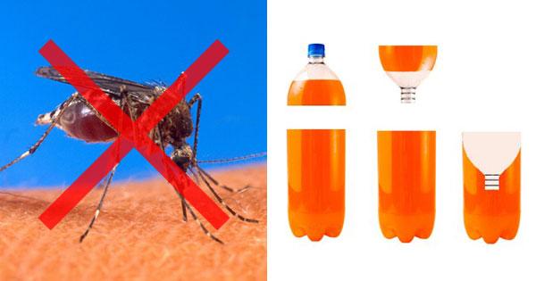 蚊取りボトル