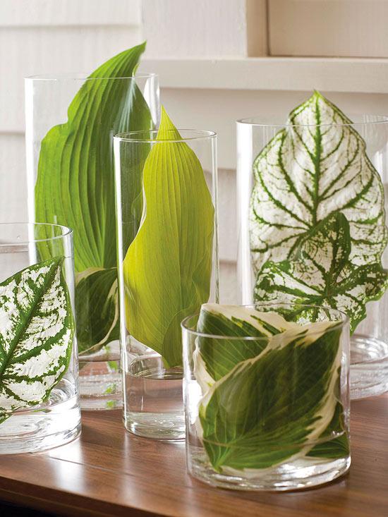 グラスに入った植物